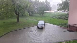 Jest siła! Wichura wyrwała drzewo z korzeniami w Warszawie!