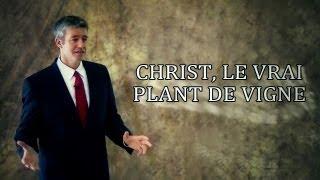 CHRIST, LE VRAI PLANT DE VIGNE !