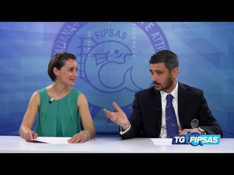TG FIPSAS 2018 - 02
