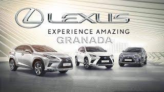 Voz de Almería - Lexus Granada