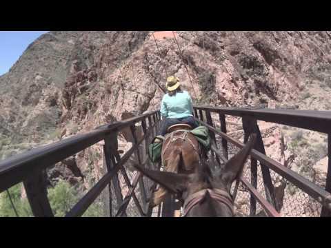 Ilyen a Grand Canyon a nyeregből