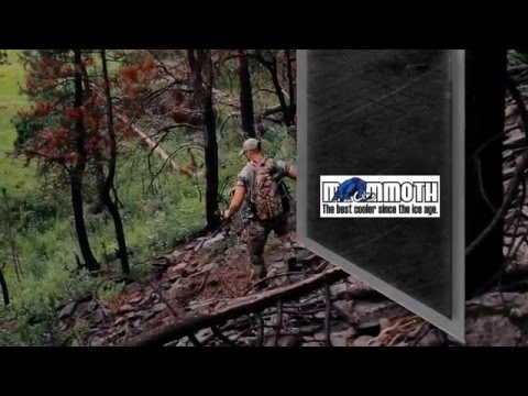 "Run2Gun TV Season2 Episode 13 ""Love The Journey"""