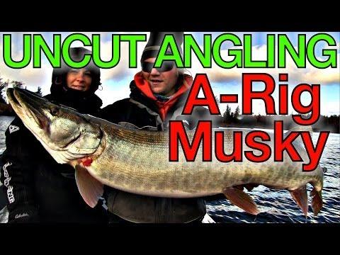 Alabama Rig Musky - Uncut Angling - November 20, 2013
