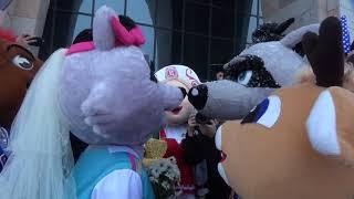 Свадьба маскотов