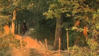 Azem Galica  - Film Nga Halil Budakova
