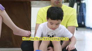 Video JANJI SUCI - Ikan Cupang Rafathar Bikin Heboh (3/3/19) Part 4 MP3, 3GP, MP4, WEBM, AVI, FLV Mei 2019