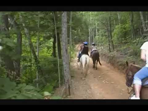 Blue Ridge Horseback Riding