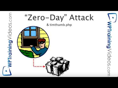 how to discover zero day exploits