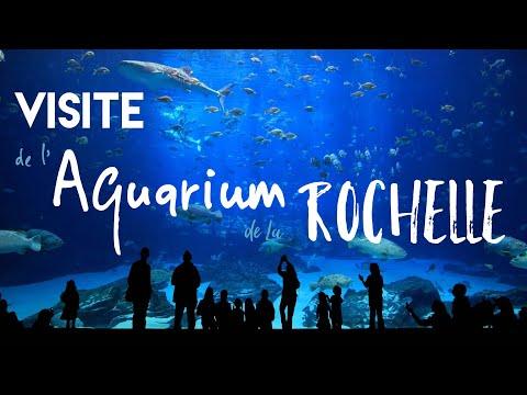 VISITE de lAquarium de La ROCHELLE_Akvárium