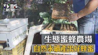 【TVBS】生態蜜蜂農場 自然永續產出好蜂蜜