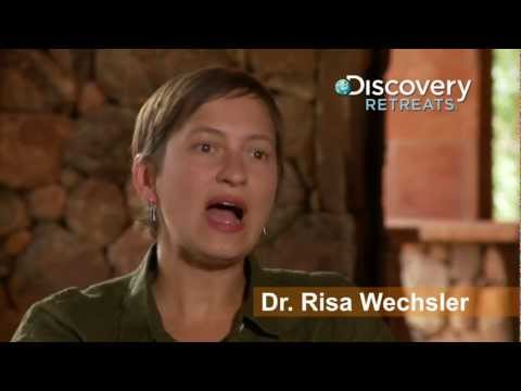 Discovery Retreats: Dr. Risa Wechsler on