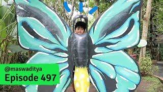 Video Acan Kok Jadi Kupu Kupu? Eco Park Malang 2018 - Part 1 (1/2) MP3, 3GP, MP4, WEBM, AVI, FLV Januari 2019