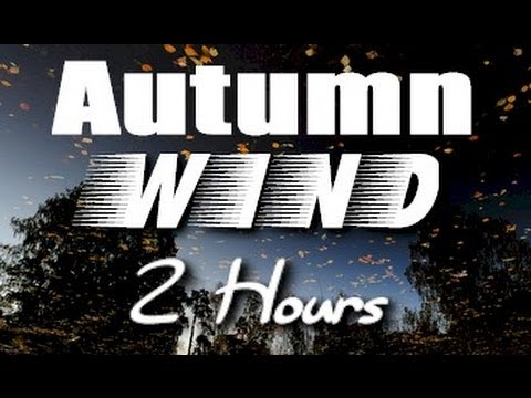 Wind - The relaxing sounds of wind through the leaves on an autumn day are featured in this unique nature video. Fall leaves are in full color. Use this video for s...