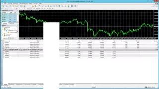 Algo-Signale LIVESTREAM - Expert Advisor #MetaTrader