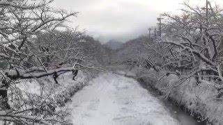 犬山羽黒初冠雪・五条川小弓の庄興禅寺