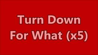 Turn Down For What (ft Pitbull & Ludacris) Explicit. LYRIC V