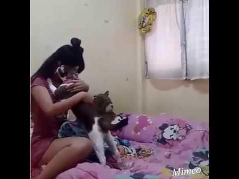 Kot pociesza płaczącą Grażynkę