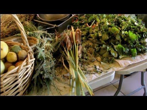 Gourmet Weeds