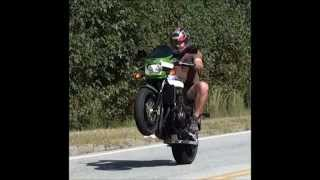 7. Kawasaki ZRX1200R , Performance Specs, 1100 verses 1200 - Christine Movie Inspired Theme