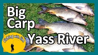 Yass Australia  city photos : Big Carp Yass River - Fishing with Jim
