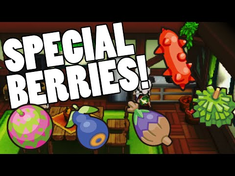 How to get Spelon Pamtre Watmel Durin and Belue berries in Pokemon Omega Ruby and Alpha Sapphire
