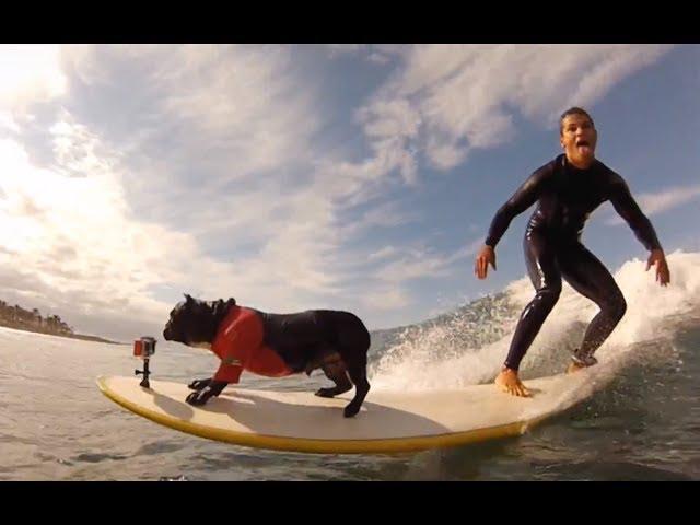 Tenerife-surf-school-escuela