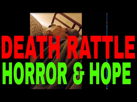 Death Rattle WARNING GRAPHIC CONTENT Horror and Hope