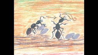歌謠篇 卡群布農語 01Qalua 螞蟻