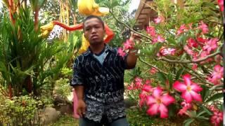 Download lagu Pasrah Sodik Mp3