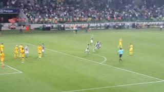 1° Gol do Pitubull com a camisa do maior Campeão do Brasil, Palmeiras.