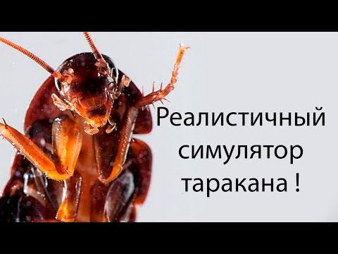 Реалистичный симулятор таракана ! ( Cockroach Simulator )