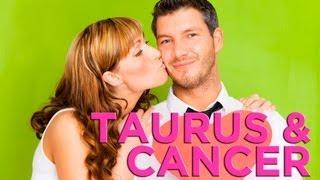 Are Taurus & Cancer Compatible?  Zodiac Love Guide