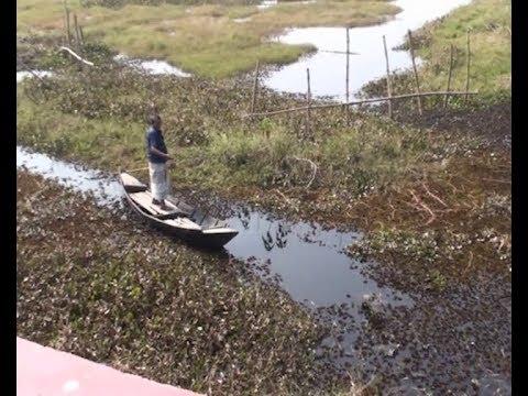 গোপালগঞ্জের কয়েক হাজার একর জমি ৩০ বছর ধরে অনাবাদি