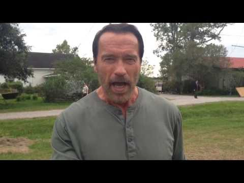 Who is your daddy? 4 секунды и два миллиона просмотров - это Арнольд!