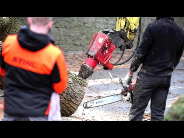 Abattage à la Grue de deux arbres de plus d'1m50 de diamètre à Court-Saint-Etienne