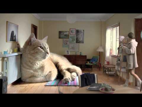 國外超犯規的一支廣告,超大隻貓沙發超療癒的啦>////< 太過分了!!!