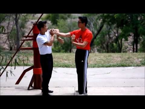 Yip Man Wing Chun Basic Wooden Dummy Drill II – 實戰詠春拳功夫