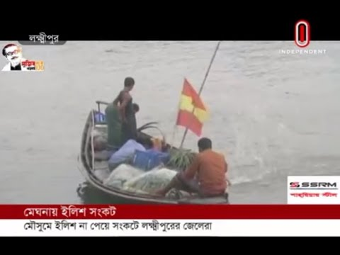 No Hilsha is being found in the Meghna river says the fishermen (06-06-2020)Courtesy: Independent TV