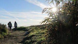 Hokitika New Zealand  city pictures gallery : RVing New Zealand | Hokitika to Christchurch