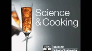 Precision Cooking: Enabling New Textures And Flavors | Lecture 2 (2011)