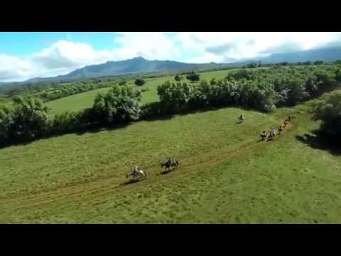 Private Guide Horseback Adventure Kauai