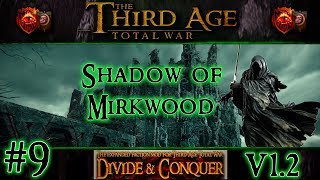 Welcome to part 9 of my playthrough of a campaign in Third Age Total War: Divide and Conquer version 1.2 as the Shadow of ...