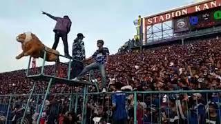 Video Viral Aksi Aremania di Stadion Kanjuruhan. Arema FC Vs Persebaya (6 Okt 2018) MP3, 3GP, MP4, WEBM, AVI, FLV November 2018