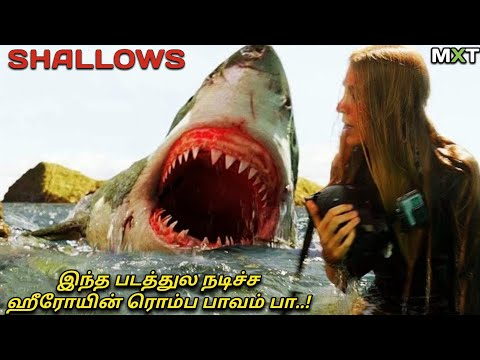 Shallows|Movie Explained in Tamil|Mxt|Best Survival|Thriller|Animal Attack Movies|Movie Review|