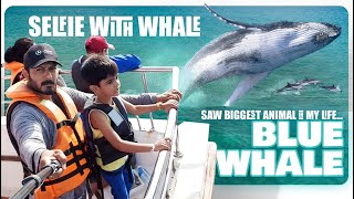 I Saw the Biggest Blue Whale Jumping Around Me In the Indian Ocean | Mirissa | SriLanka Tourism