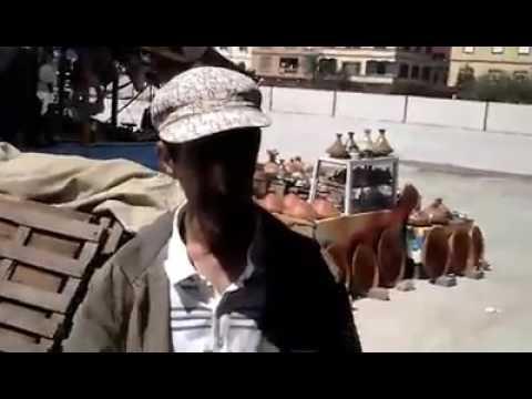 ''الزهرة العمراني'' تستنكر الوقفات الاحتجاجية المعادية للتنمية بسوق جنان فرنسيس..