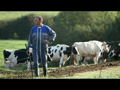 Avrupalı çiftçiler neden intihar ediyor?
