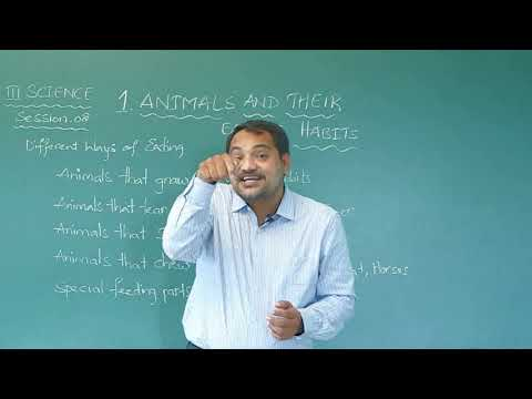 PART 2 | ANIMALS AND THEIR EATING HABITS | CLASS 3 | SCIENCE | CHAPTER 1