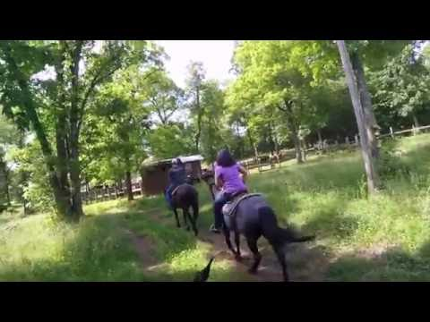 Horseback Riding Hardy Arkansas