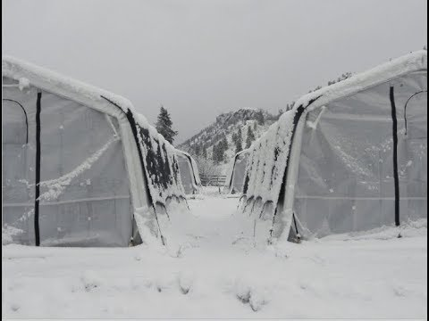 Building Permit For Snow Loads - Temporary Structure Design For Greenhouses In Cold Climates